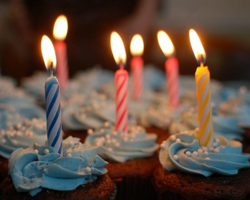 20. urodziny marki ZOO Karina w CH Batory